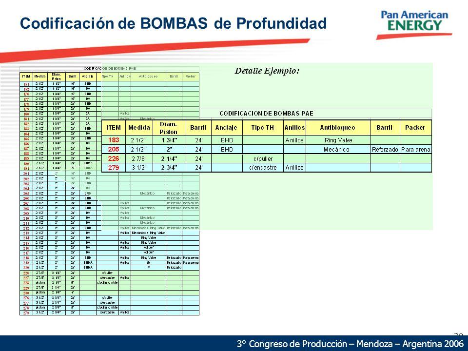 20 68 km 87 km Detalle Ejemplo: 3° Congreso de Producción – Mendoza – Argentina 2006 Codificación de BOMBAS de Profundidad