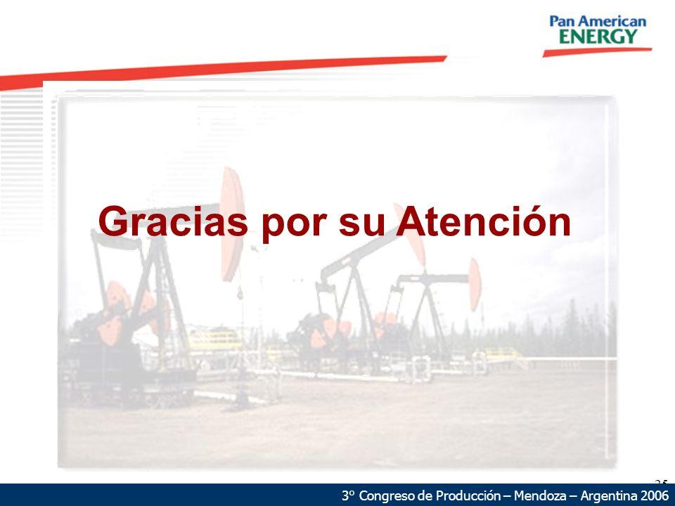 25 3° Congreso de Producción – Mendoza – Argentina 2006 Gracias por su Atención