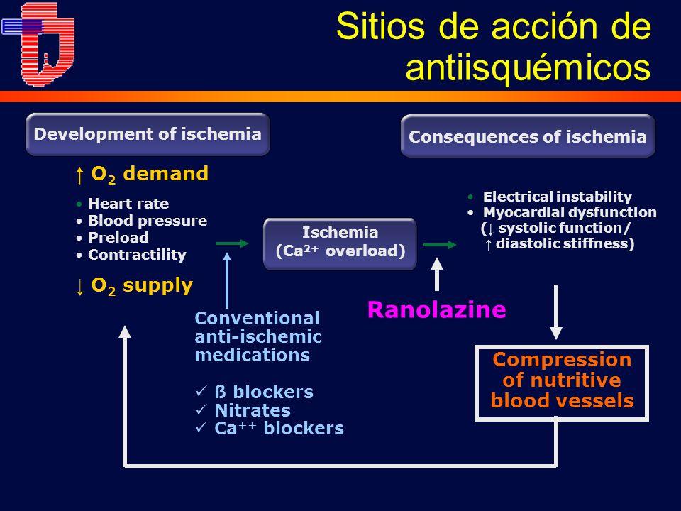Sitios de acción de antiisquémicos Ranolazine Consequences of ischemia Electrical instability Myocardial dysfunction ( systolic function/ diastolic st