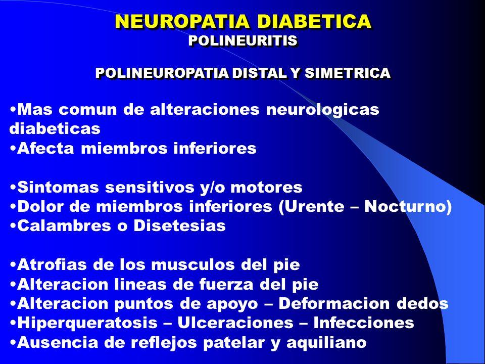 NEUROPATIA DIABETICA POLINEURITIS POLINEUROPATIA DISTAL Y SIMETRICA NEUROPATIA DIABETICA POLINEURITIS POLINEUROPATIA DISTAL Y SIMETRICA Mas comun de alteraciones neurologicas diabeticas Afecta miembros inferiores Sintomas sensitivos y/o motores Dolor de miembros inferiores (Urente – Nocturno) Calambres o Disetesias Atrofias de los musculos del pie Alteracion lineas de fuerza del pie Alteracion puntos de apoyo – Deformacion dedos Hiperqueratosis – Ulceraciones – Infecciones Ausencia de reflejos patelar y aquiliano