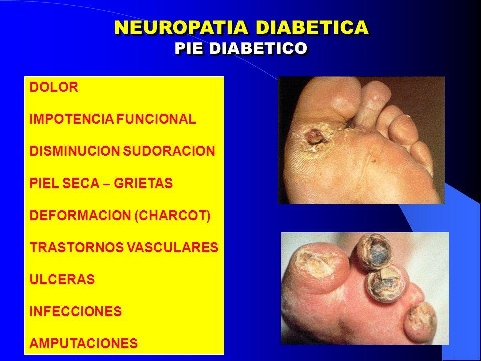 NEUROPATIA DIABETICA PIE DIABETICO NEUROPATIA DIABETICA PIE DIABETICO DOLOR IMPOTENCIA FUNCIONAL DISMINUCION SUDORACION PIEL SECA – GRIETAS DEFORMACION (CHARCOT) TRASTORNOS VASCULARES ULCERAS INFECCIONES AMPUTACIONES