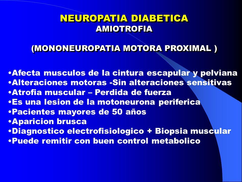 NEUROPATIA DIABETICA AMIOTROFIA (MONONEUROPATIA MOTORA PROXIMAL ) NEUROPATIA DIABETICA AMIOTROFIA (MONONEUROPATIA MOTORA PROXIMAL ) Afecta musculos de la cintura escapular y pelviana Alteraciones motoras -Sin alteraciones sensitivas Atrofia muscular – Perdida de fuerza Es una lesion de la motoneurona periferica Pacientes mayores de 50 años Aparicion brusca Diagnostico electrofisiologico + Biopsia muscular Puede remitir con buen control metabolico
