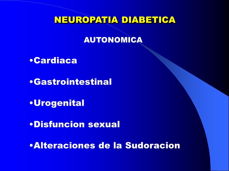 NEUROPATIA DIABETICA AUTONOMICA Cardiaca Gastrointestinal Urogenital Disfuncion sexual Alteraciones de la Sudoracion