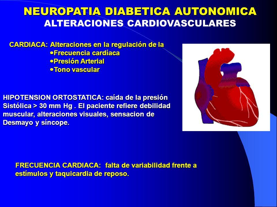 CARDIACA: Alteraciones en la regulación de la Frecuencia cardíaca Frecuencia cardíaca Presión Arterial Presión Arterial Tono vascular Tono vascular HIPOTENSION ORTOSTATICA: caída de la presión Sistólica > 30 mm Hg.