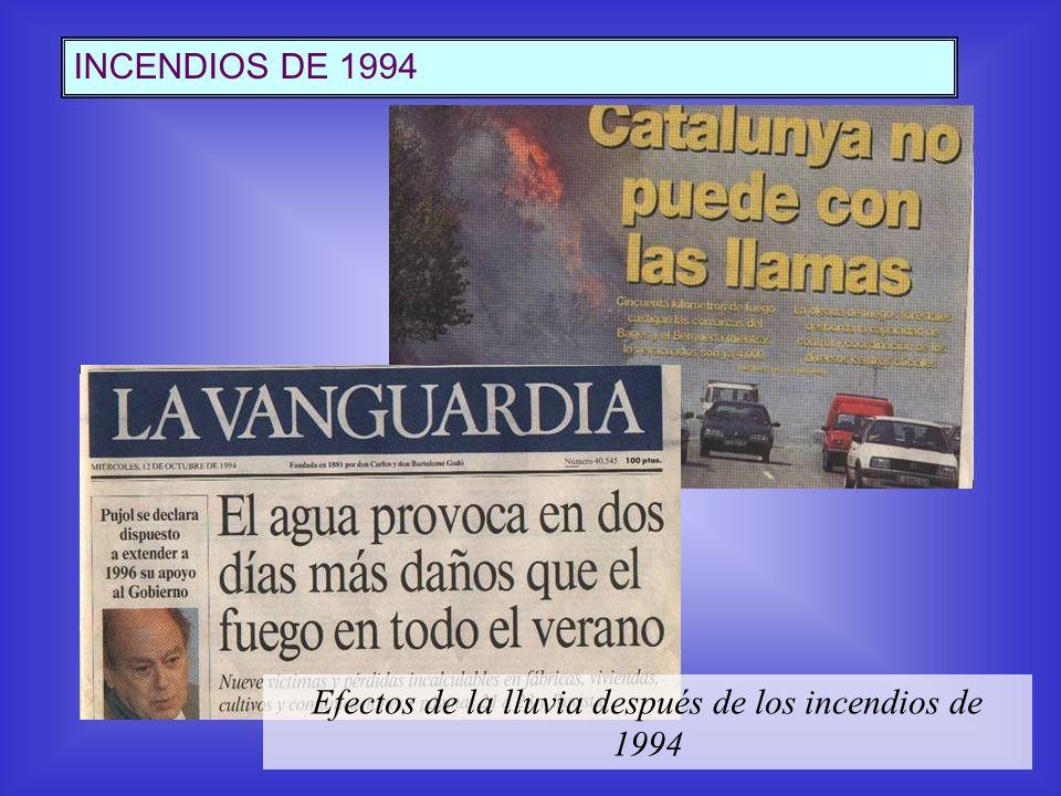INCENDIOS DE 1994 Efectos de la lluvia después de los incendios de 1994