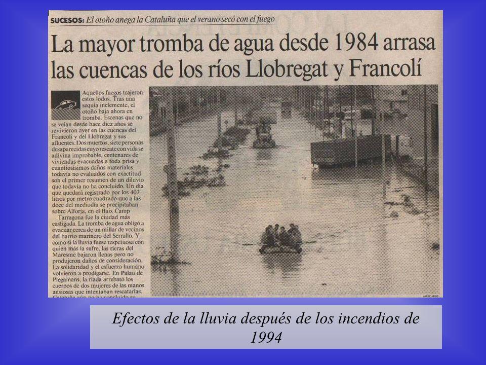 1962 INUNDACIONES EN EL VALLES Rubí, 25 sep 1962 Rubí, 24 sep 1962