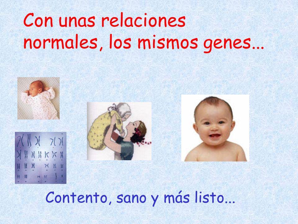 Con unas relaciones normales, los mismos genes... Contento, sano y más listo...