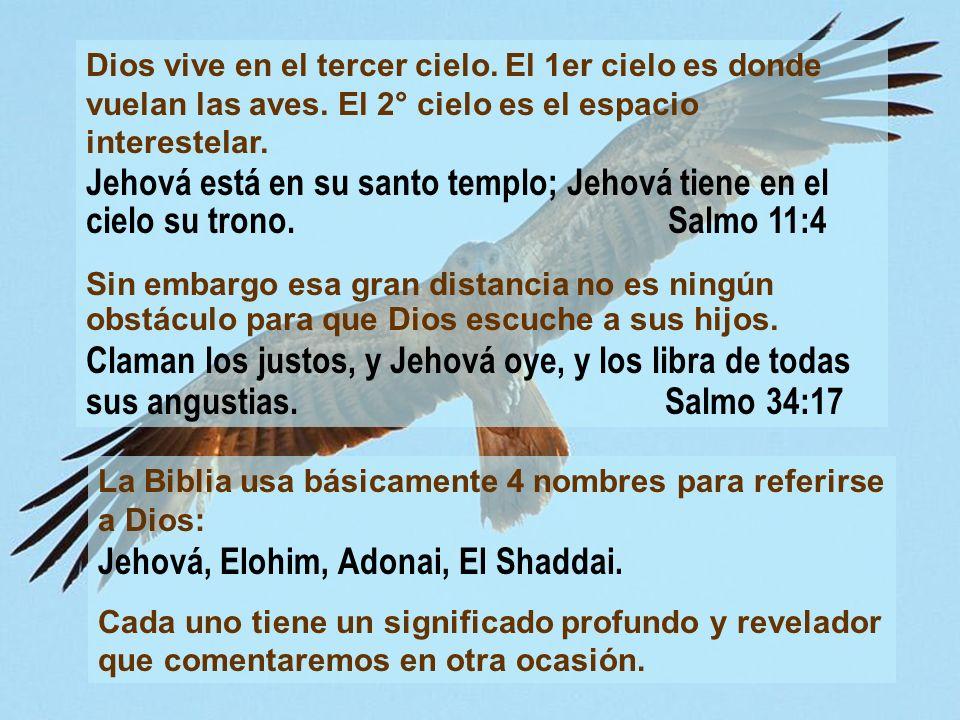 La gloria de Dios no solo puede percibirse a través de la Biblia.