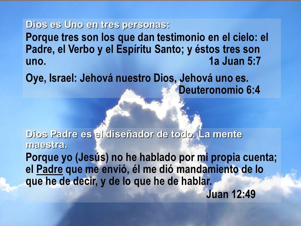 Dios Hijo es el ejecutor de esos diseños.El Autor de la salvación del hombre.
