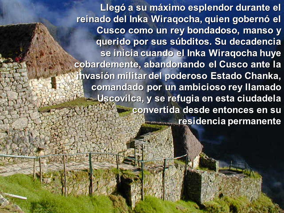 ETIMOLOGIA :
