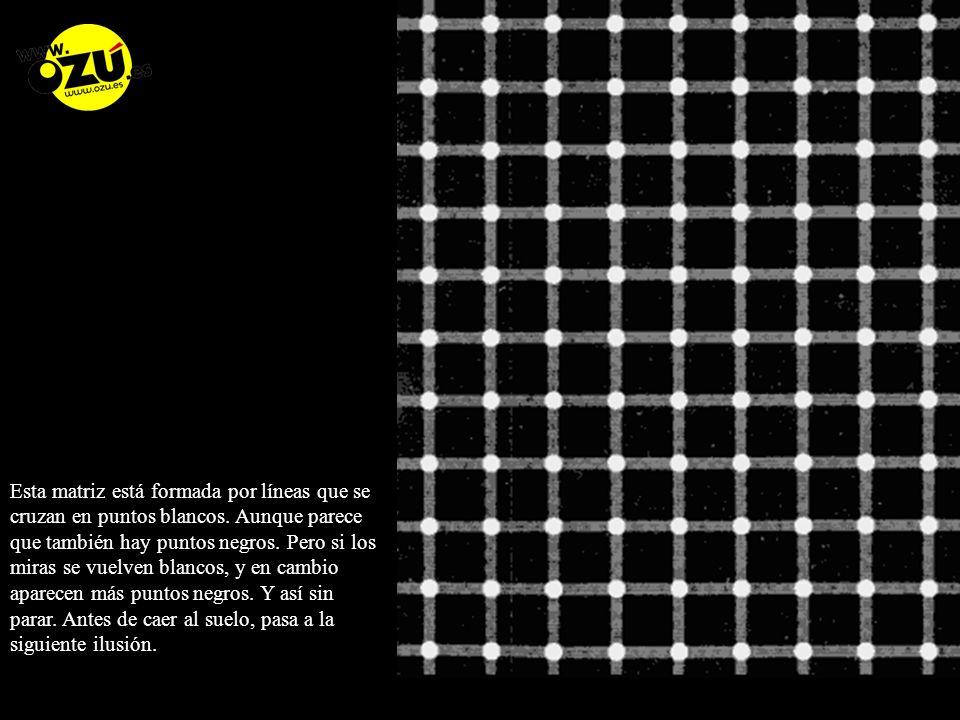 Esta matriz está formada por líneas que se cruzan en puntos blancos.