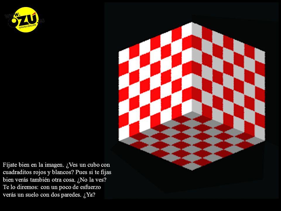 Fíjate bien en la imagen.¿Ves un cubo con cuadraditos rojos y blancos.