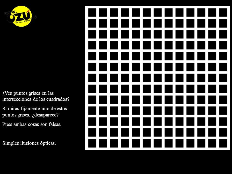 ¿Ves puntos grises en las intersecciones de los cuadrados.