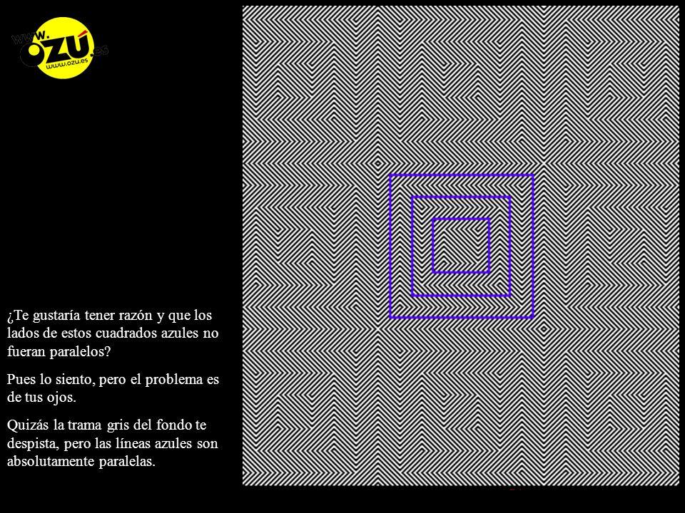 ¿Te gustaría tener razón y que los lados de estos cuadrados azules no fueran paralelos.
