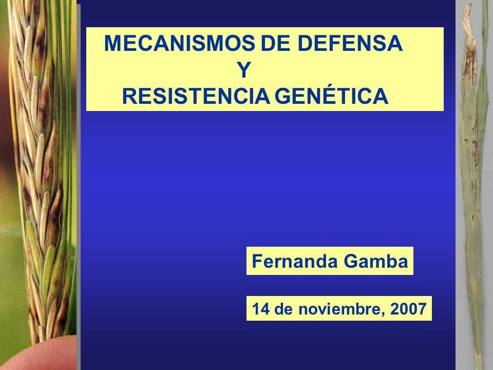 MECANISMOS DE DEFENSA Y RESISTENCIA GENÉTICA 14 de noviembre, 2007 Fernanda Gamba
