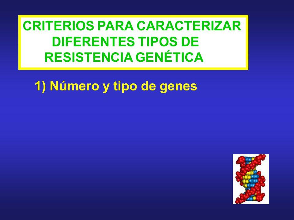 CRITERIOS PARA CARACTERIZAR DIFERENTES TIPOS DE RESISTENCIA GENÉTICA 1) Número y tipo de genes