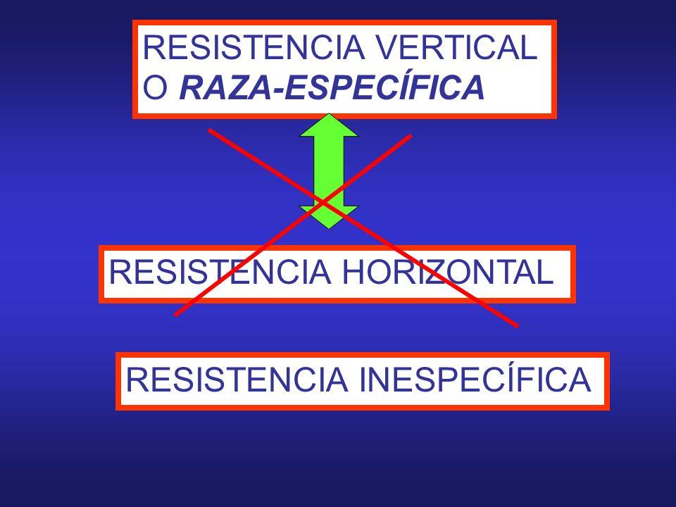 0 0.4 1 01231,21,31,42,31,2,3 Razas de Phytophtora infestans RESISTENCIA R 1 Resistencia de un cultivar de papa a Phytophtora infestans