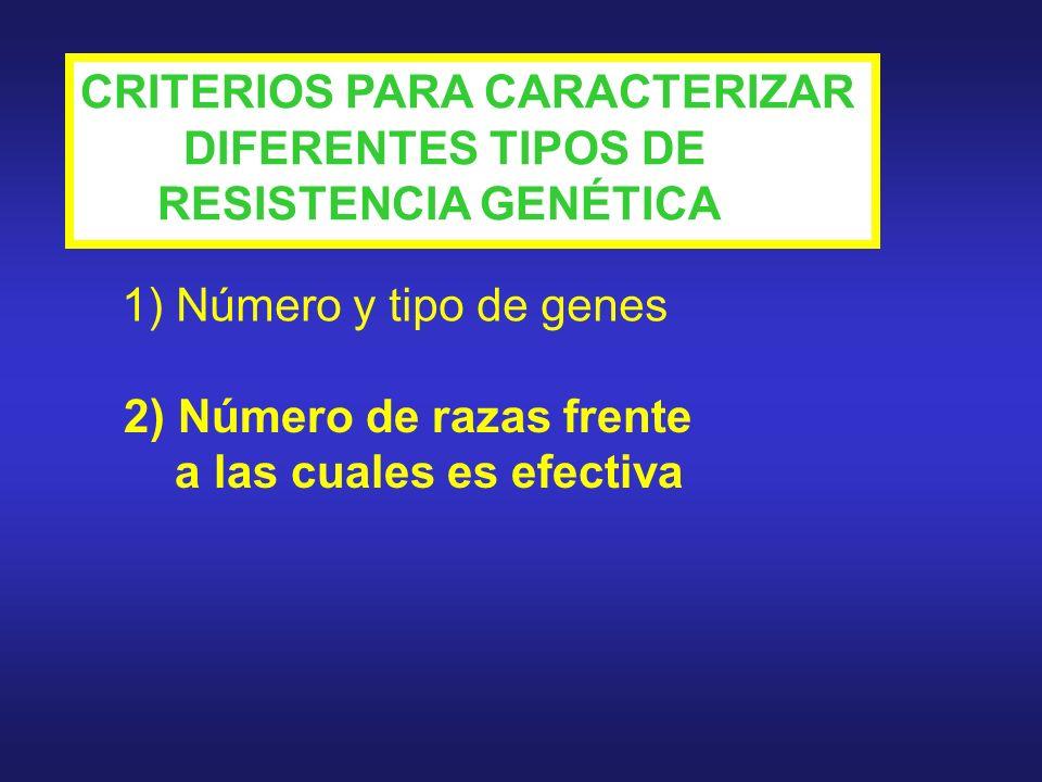 CRITERIOS PARA CARACTERIZAR DIFERENTES TIPOS DE RESISTENCIA GENÉTICA 1) Número y tipo de genes 2) Número de razas frente a las cuales es efectiva