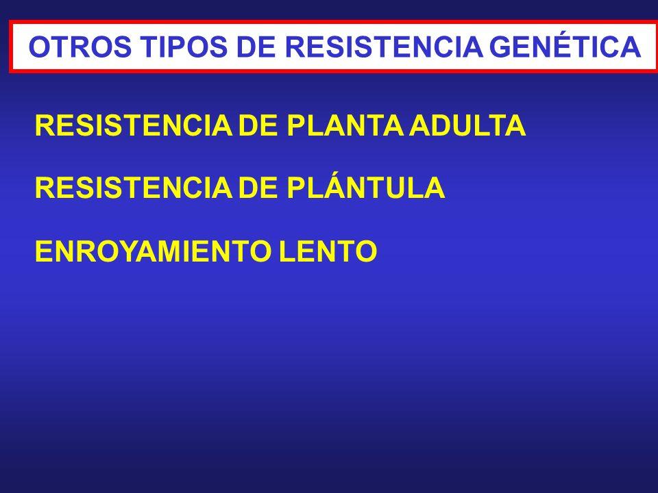 OTROS TIPOS DE RESISTENCIA GENÉTICA RESISTENCIA DE PLANTA ADULTA RESISTENCIA DE PLÁNTULA ENROYAMIENTO LENTO