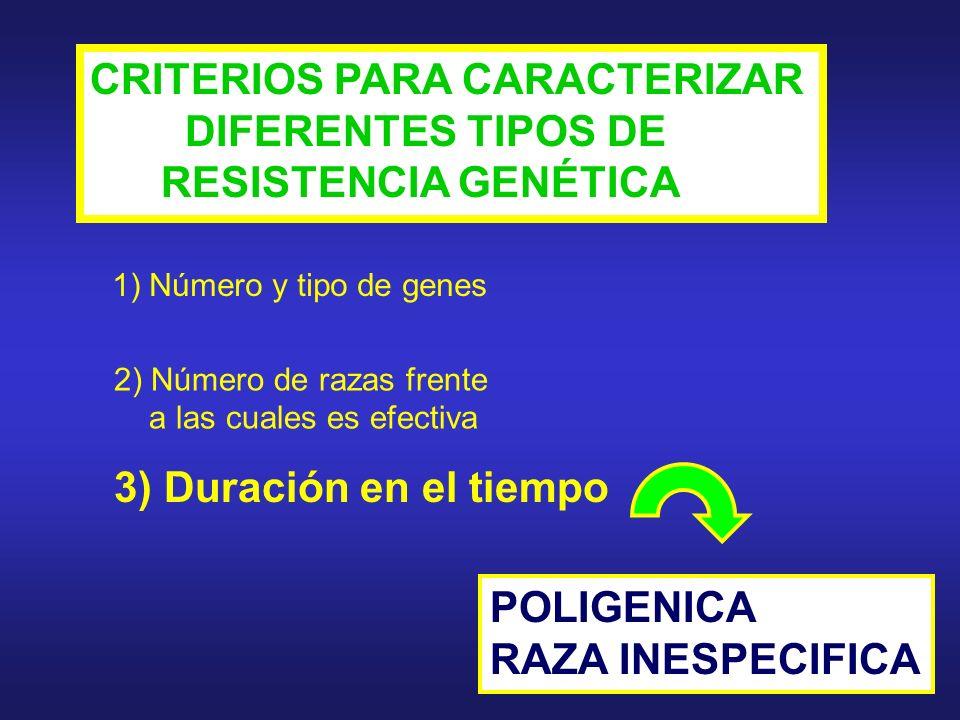 CONCEPTOS IMPORTANTES ACERCA DE LA RESISTENCIA GENÉTICA (I) 2) SUSCEPTIBILIDAD Y RESISTENCIA DEBEN SER CORRECTAMENTE CARACTERIZADOS PARA CADA SISTEMA HUÉSPED-PARÁSITO 1) VARIAS CLASES DE RESISTENCIA GENÉTICA PUEDEN COEXISTIR: DIFÍCILES DE CATEGORIZAR