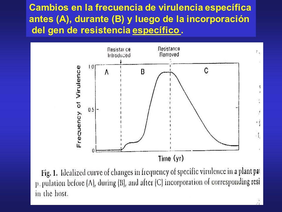 Cambios en la frecuencia de virulencia específica antes (A), durante (B) y luego de la incorporación del gen de resistencia específico.