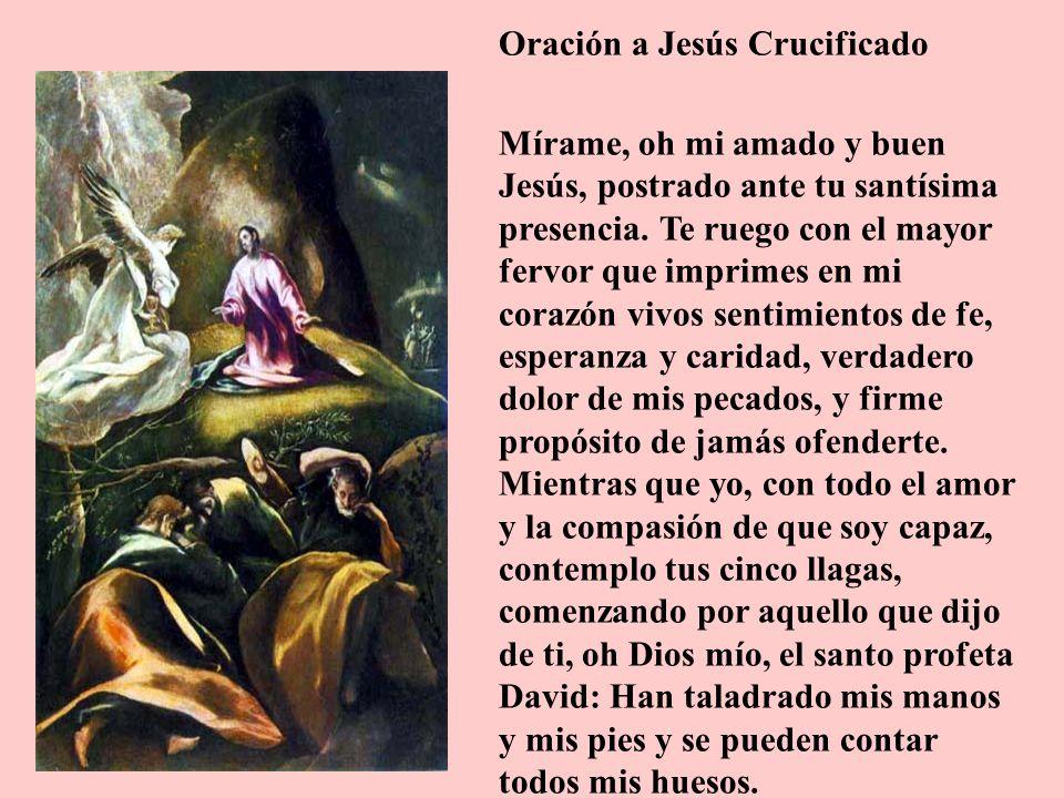 Oración a Jesús Crucificado Mírame, oh mi amado y buen Jesús, postrado ante tu santísima presencia. Te ruego con el mayor fervor que imprimes en mi co