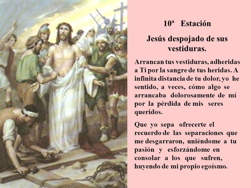 10ª Estación Jesús despojado de sus vestiduras. Arrancan tus vestiduras, adheridas a Ti por la sangre de tus heridas. A infinita distancia de tu dolor