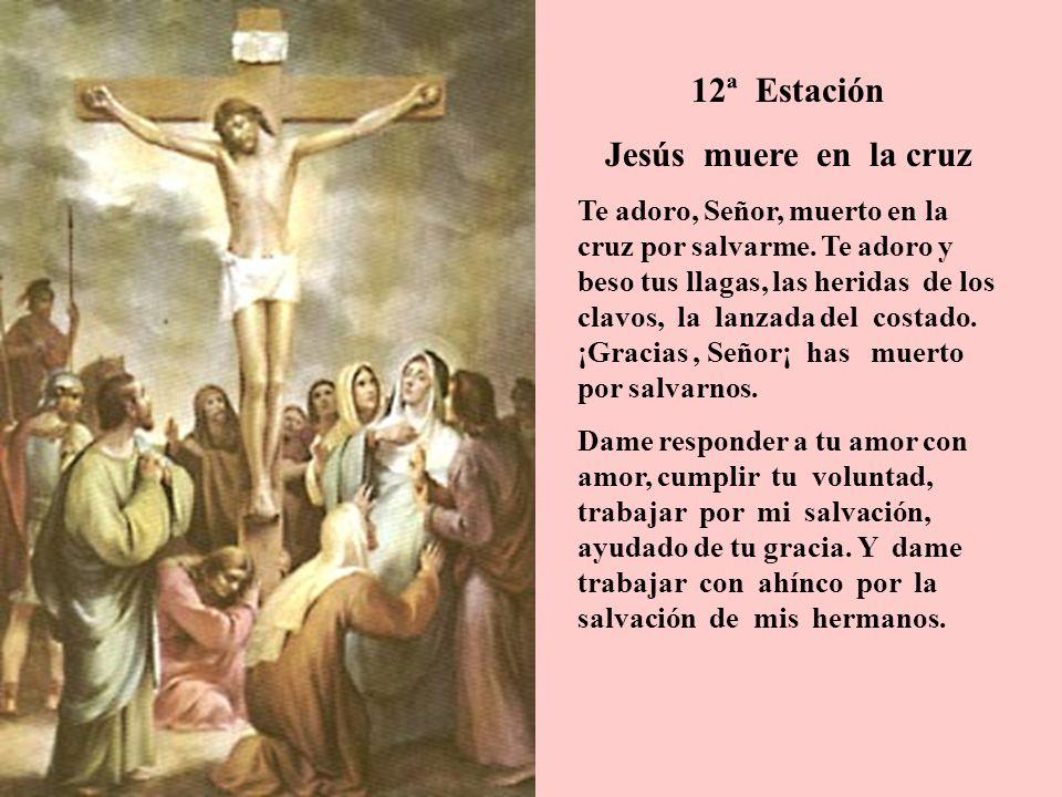 12ª Estación Jesús muere en la cruz Te adoro, Señor, muerto en la cruz por salvarme. Te adoro y beso tus llagas, las heridas de los clavos, la lanzada