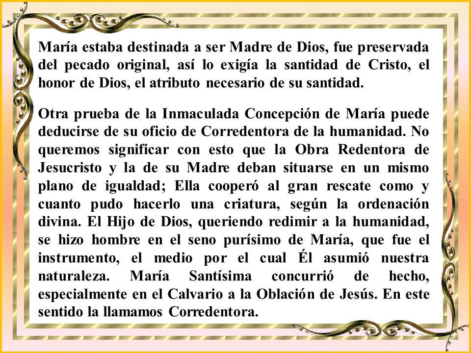 REINA CONCEBIDA SIN PECADO ORIGINAL El privilegio de la Inmaculada Concepción. Estamos muy de acuerdo con que Dios hiciera una excepción con su Madre,