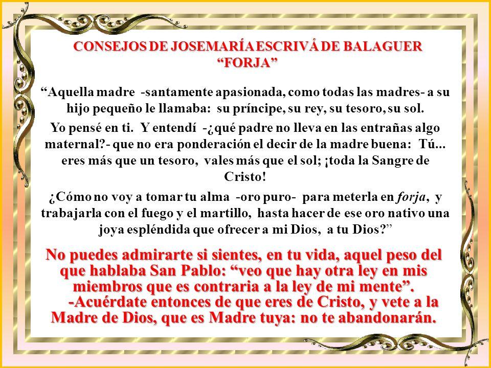 He aquí como la Sagrada Escritura, los Santos Padres, la revelación y también la razón iluminada por la fe demuestran la verdad de la Inmaculada Conce