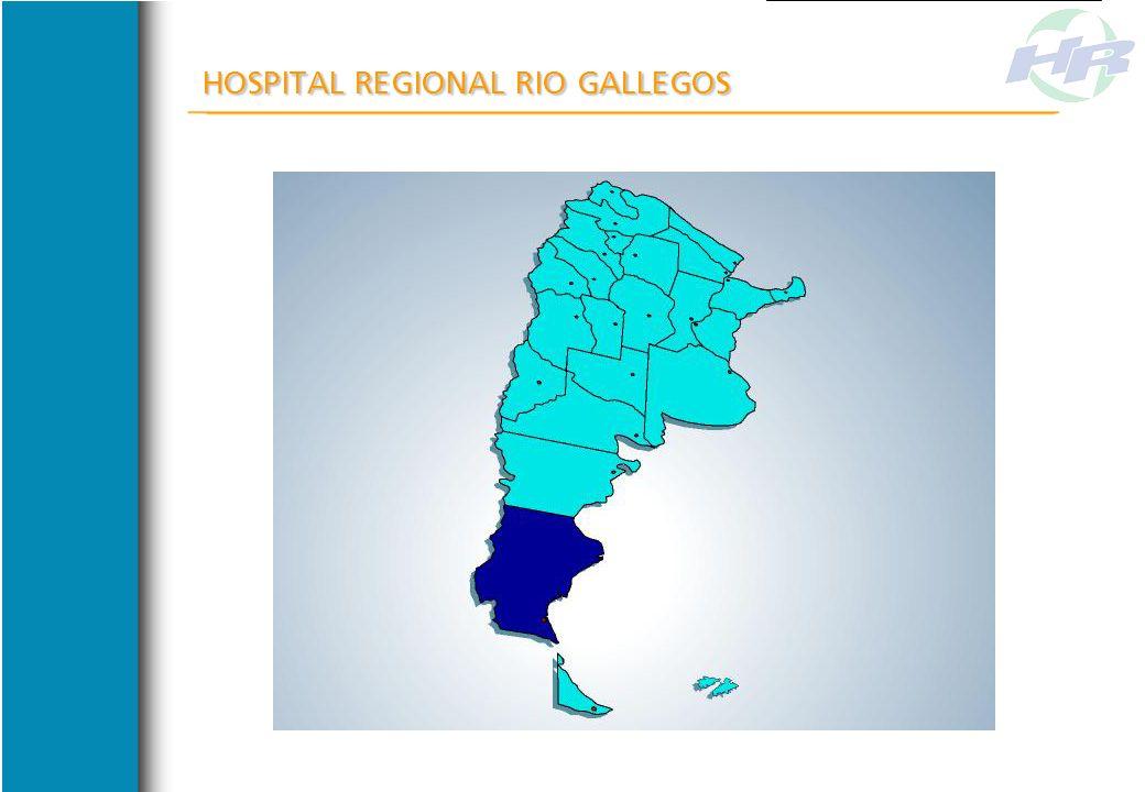 De la crisis interna a la crisis del año 2001. La importancia de contar con un Modelo de Gestión HOSPITAL REGIONAL RIO GALLEGOS Servicio de Farmacia y