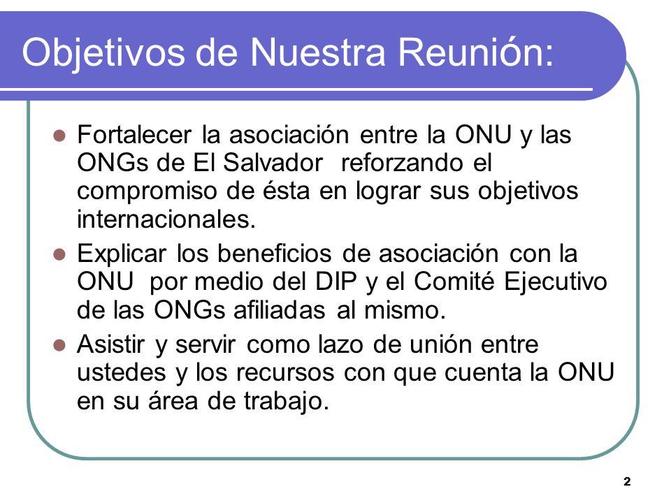 2 Fortalecer la asociación entre la ONU y las ONGs de El Salvador reforzando el compromiso de ésta en lograr sus objetivos internacionales.