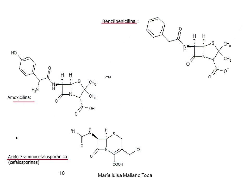 María luisa Maliaño Toca 9 2.3.-Clasificación por su estructura química 1.- - lactámicos: Penicilinas y Cefalosporinas1.- - lactámicos: Penicilinas y