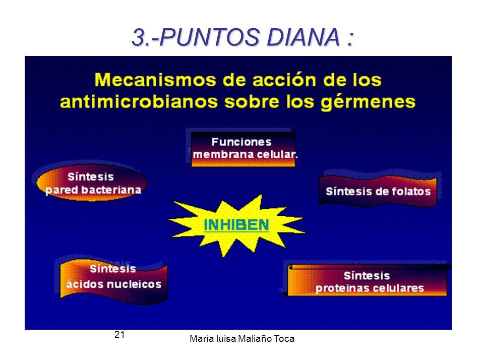 María luisa Maliaño Toca 20 3.-Mecanismos de acción de los antibióticos Interfieren con la construcción de la pared de peptidoglucano de la célula Inh