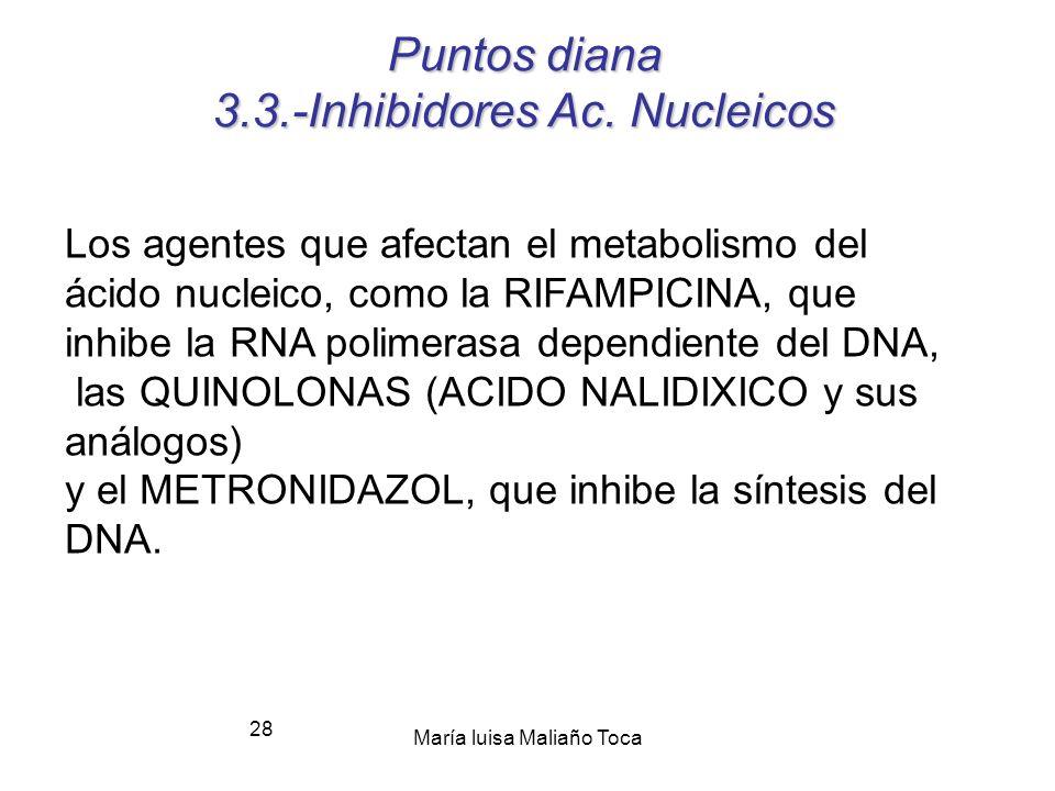 María luisa Maliaño Toca 27 3.2.-Ribosoma: puntos de acción.