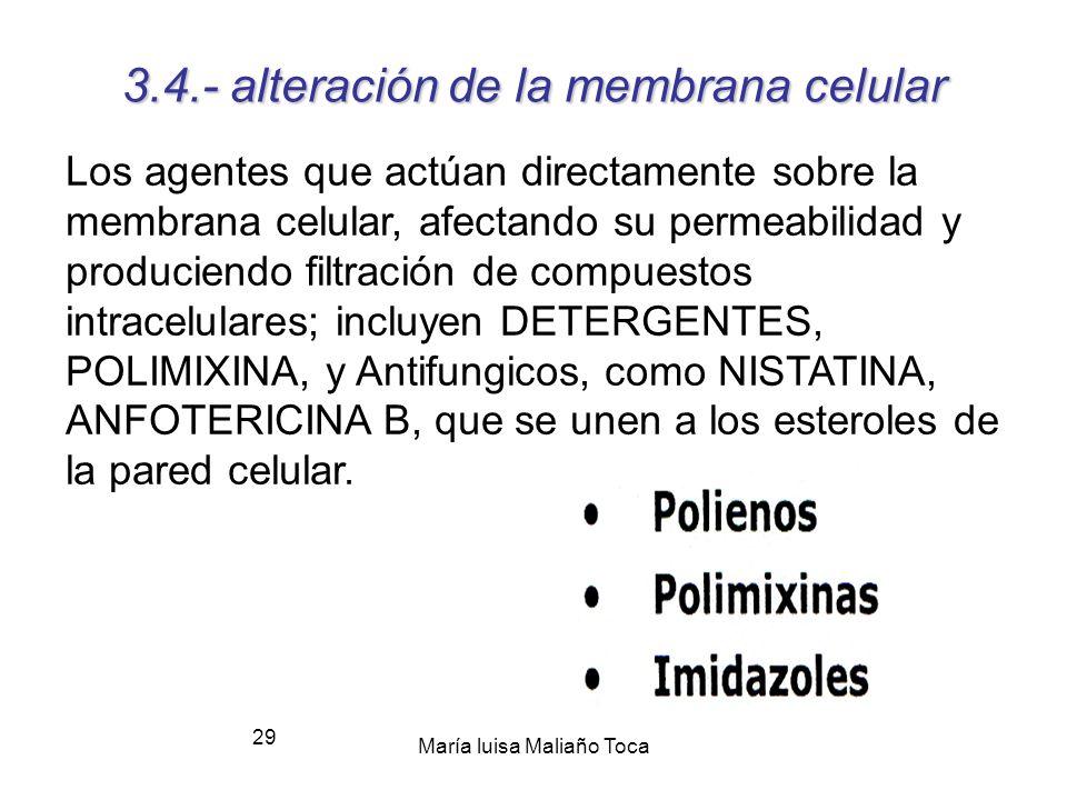 María luisa Maliaño Toca 28 Puntos diana 3.3.-Inhibidores Ac. Nucleicos Los agentes que afectan el metabolismo del ácido nucleico, como la RIFAMPICINA