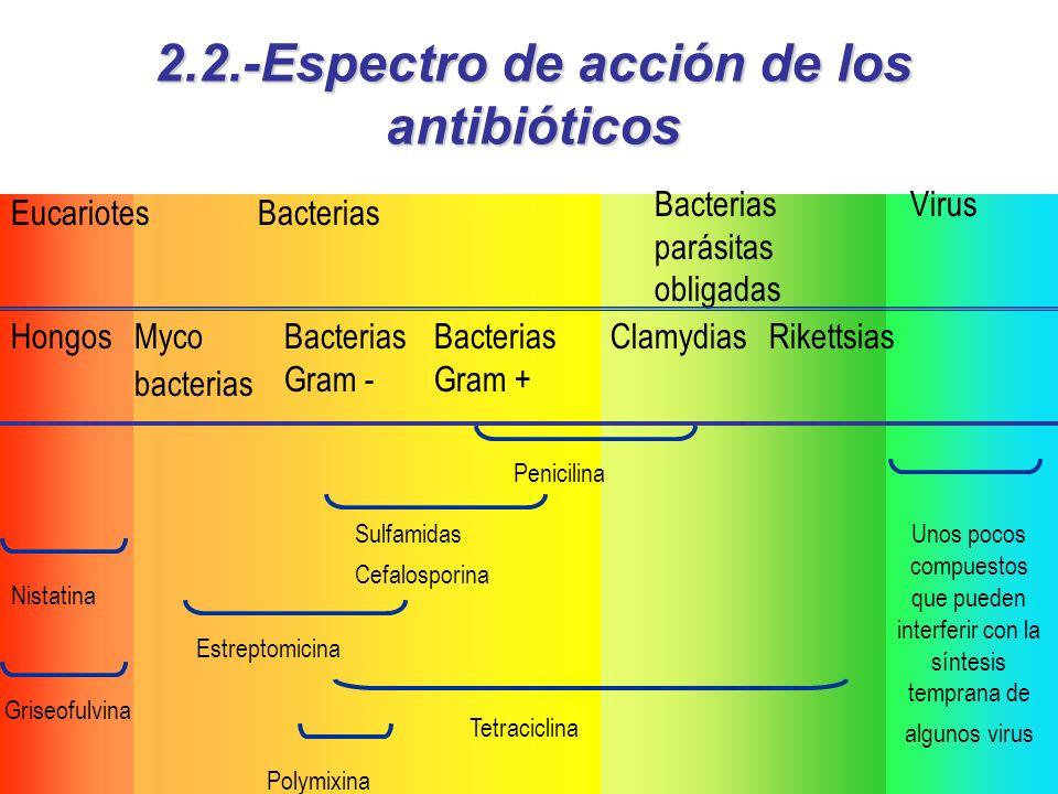 María luisa Maliaño Toca 7 Virus EucariotesBacterias Bacterias parásitas obligadas Myco bacterias Bacterias Gram - Bacterias Gram + HongosClamydiasRikettsias Tetraciclina Sulfamidas Cefalosporina Estreptomicina Polymixina Penicilina Nistatina Unos pocos compuestos que pueden interferir con la síntesis temprana de algunos virus Griseofulvina 2.2.-Espectro de acción de los antibióticos