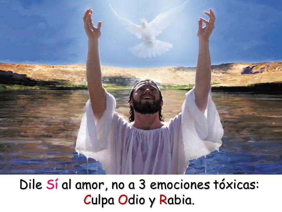 Dile Sí al amor, no a 3 emociones tóxicas: Culpa Odio y Rabia.