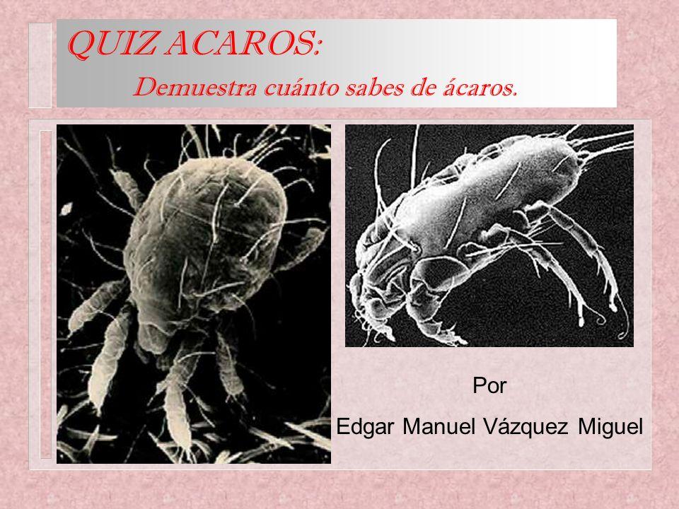Por Edgar Manuel Vázquez Miguel QUIZ ACAROS: Demuestra cuánto sabes de ácaros.