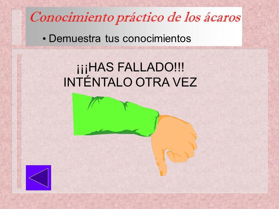 Conocimiento práctico de los ácaros Demuestra tus conocimientos ¡¡¡HAS FALLADO!!! INTÉNTALO OTRA VEZ
