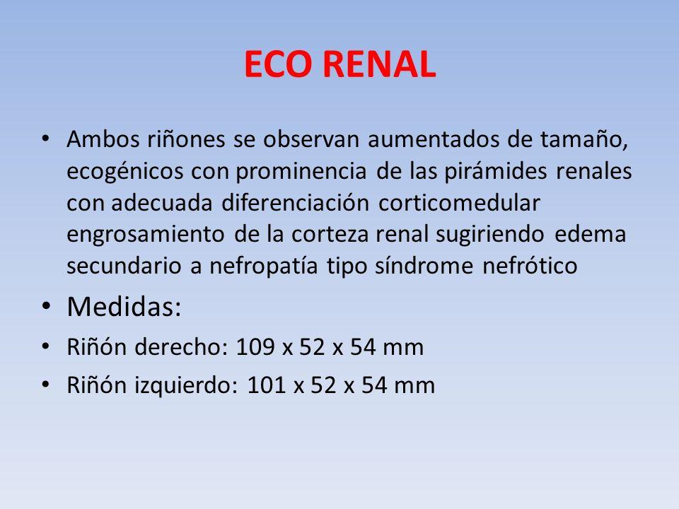 ECO RENAL Ambos riñones se observan aumentados de tamaño, ecogénicos con prominencia de las pirámides renales con adecuada diferenciación corticomedul