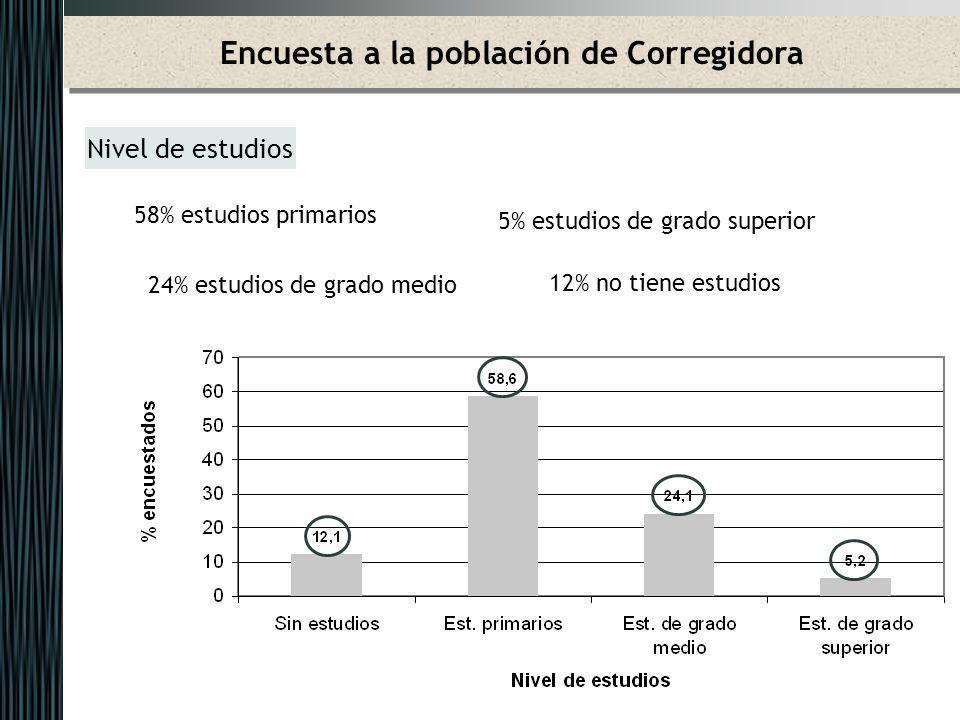 Encuesta a la población de Corregidora Nivel de estudios 58% estudios primarios 5% estudios de grado superior 24% estudios de grado medio 12% no tiene