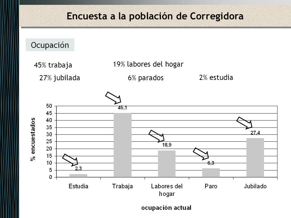 Encuesta a la población de Corregidora Ocupación 45% trabaja 19% labores del hogar 27% jubilada 6% parados 2% estudia