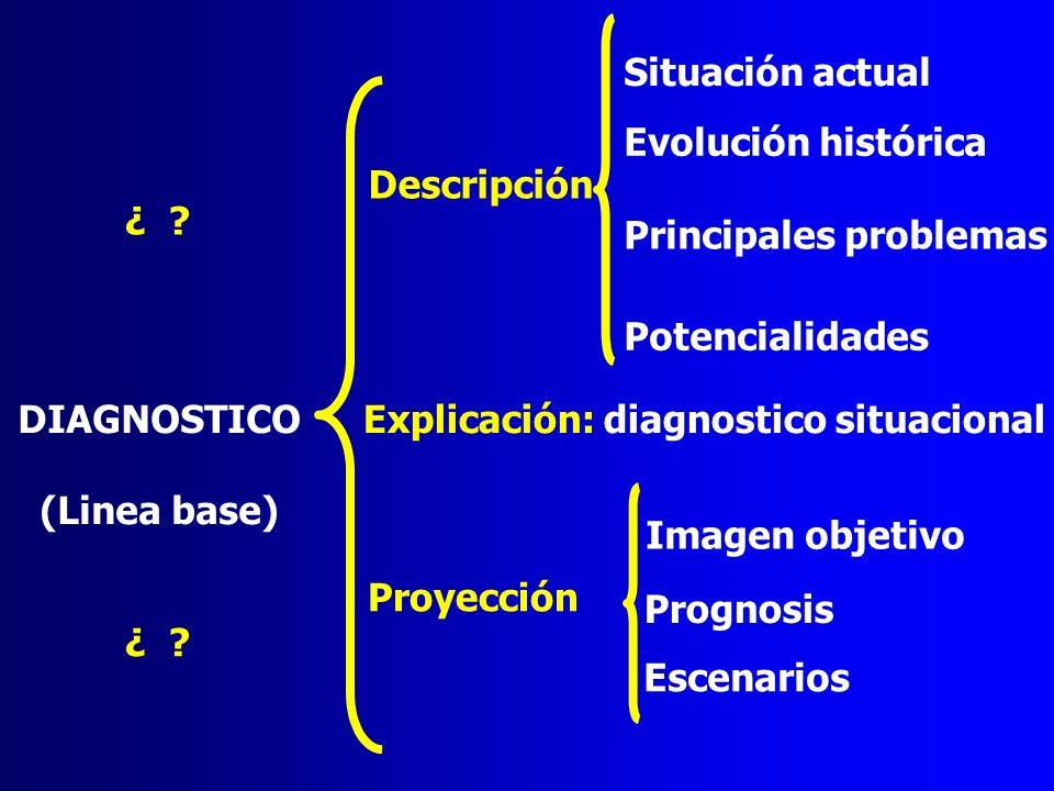 Descripción Situación actual Evolución histórica Principales problemas Potencialidades Explicación: diagnostico situacional Proyección DIAGNOSTICO (Li