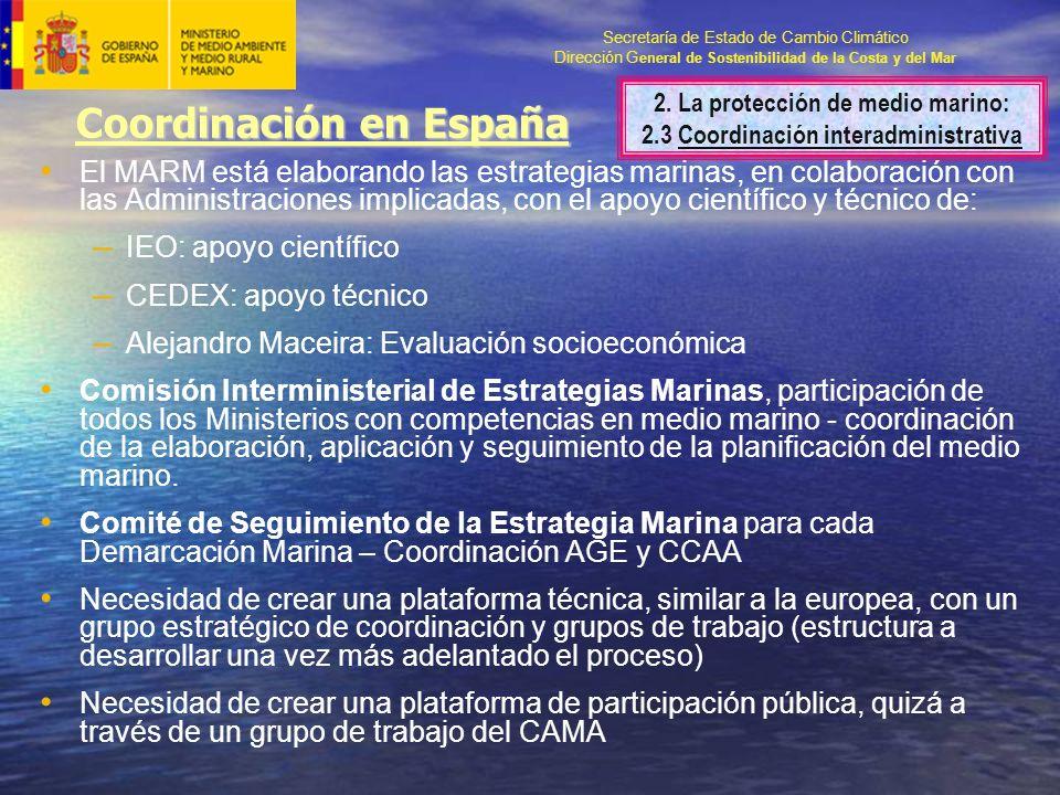 Secretaría de Estado de Cambio Climático Dirección G eneral de Sostenibilidad de la Costa y del Mar Coordinación en España El MARM está elaborando las estrategias marinas, en colaboración con las Administraciones implicadas, con el apoyo científico y técnico de: – IEO: apoyo científico – CEDEX: apoyo técnico – Alejandro Maceira: Evaluación socioeconómica Comisión Interministerial de Estrategias Marinas, participación de todos los Ministerios con competencias en medio marino - coordinación de la elaboración, aplicación y seguimiento de la planificación del medio marino.