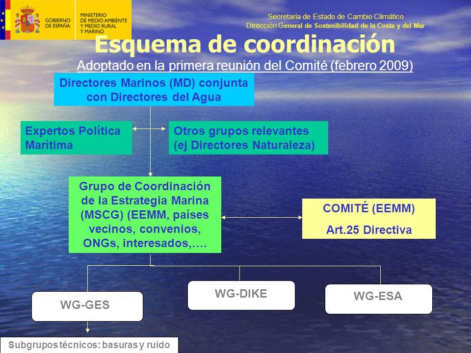 Secretaría de Estado de Cambio Climático Dirección G eneral de Sostenibilidad de la Costa y del Mar Esquema de coordinación Adoptado en la primera reunión del Comité (febrero 2009) Directores Marinos (MD) conjunta con Directores del Agua Expertos Política Marítima Otros grupos relevantes (ej Directores Naturaleza) Grupo de Coordinación de la Estrategia Marina (MSCG) (EEMM, países vecinos, convenios, ONGs, interesados,….