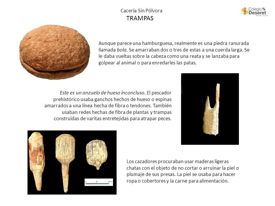 Cacería Sin Pólvora TRAMPAS Aunque parece una hamburguesa, realmente es una piedra ranurada llamada bola. Se amarraban dos o tres de estas a una cuerd