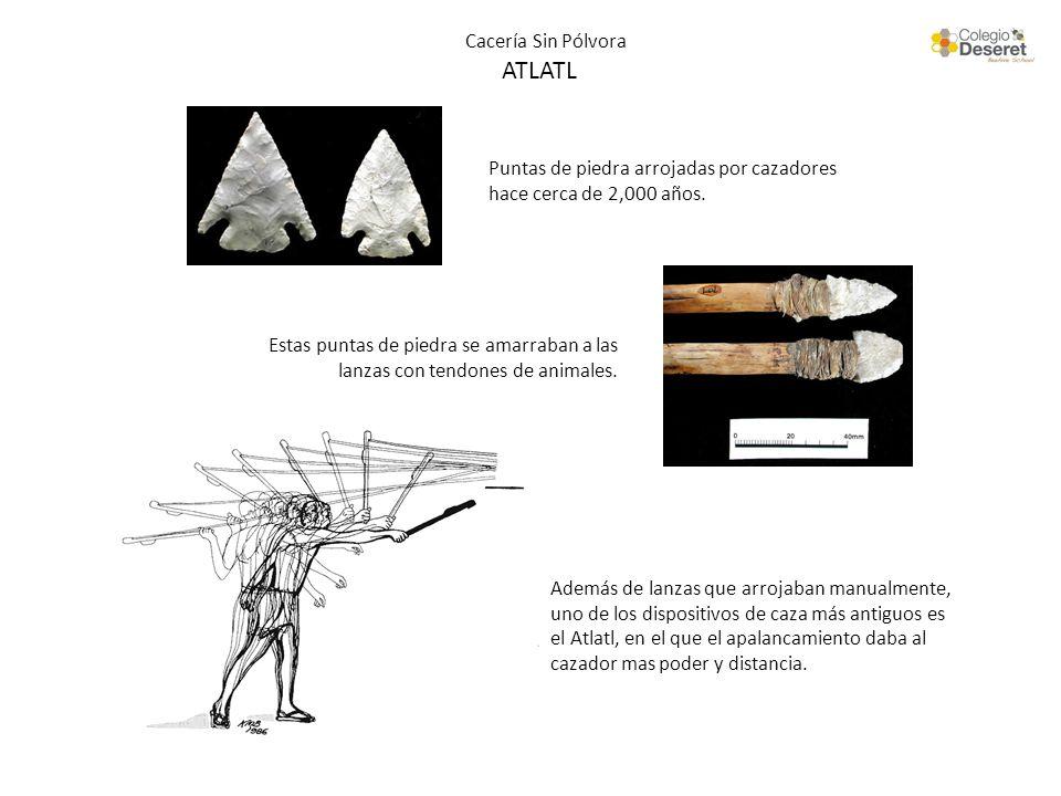 Cacería Sin Pólvora ATLATL Puntas de piedra arrojadas por cazadores hace cerca de 2,000 años. Estas puntas de piedra se amarraban a las lanzas con ten
