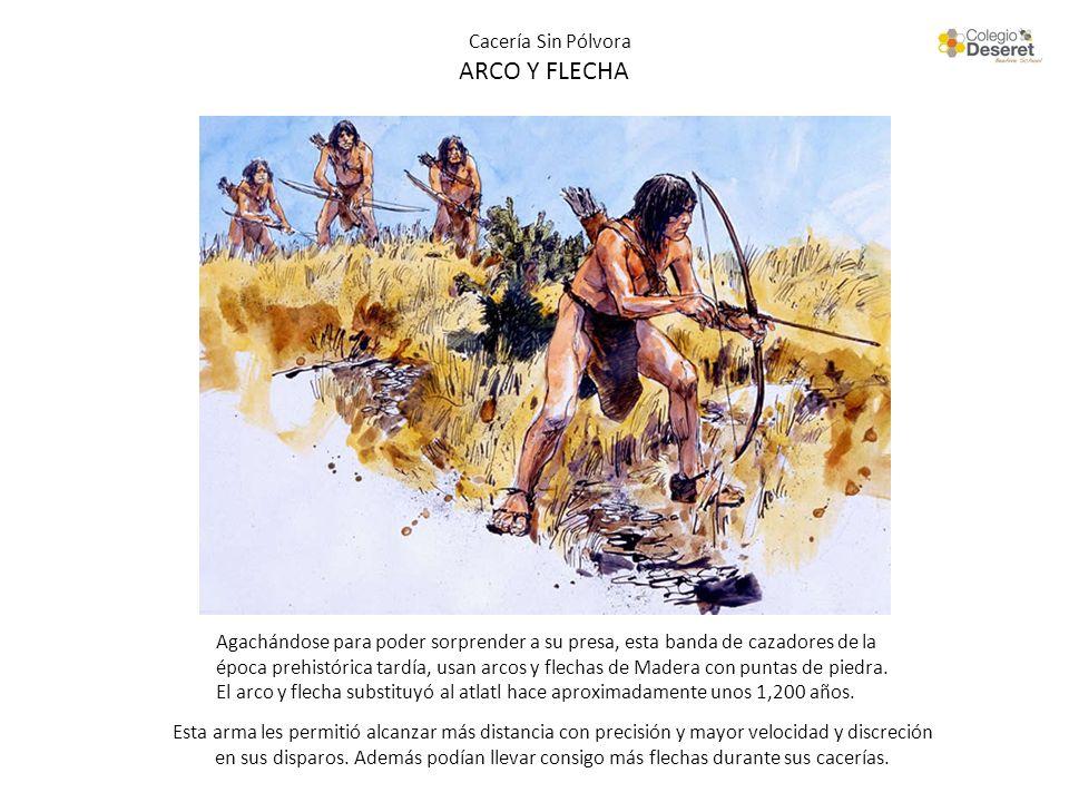 Cacería Sin Pólvora ARCO Y FLECHA Agachándose para poder sorprender a su presa, esta banda de cazadores de la época prehistórica tardía, usan arcos y