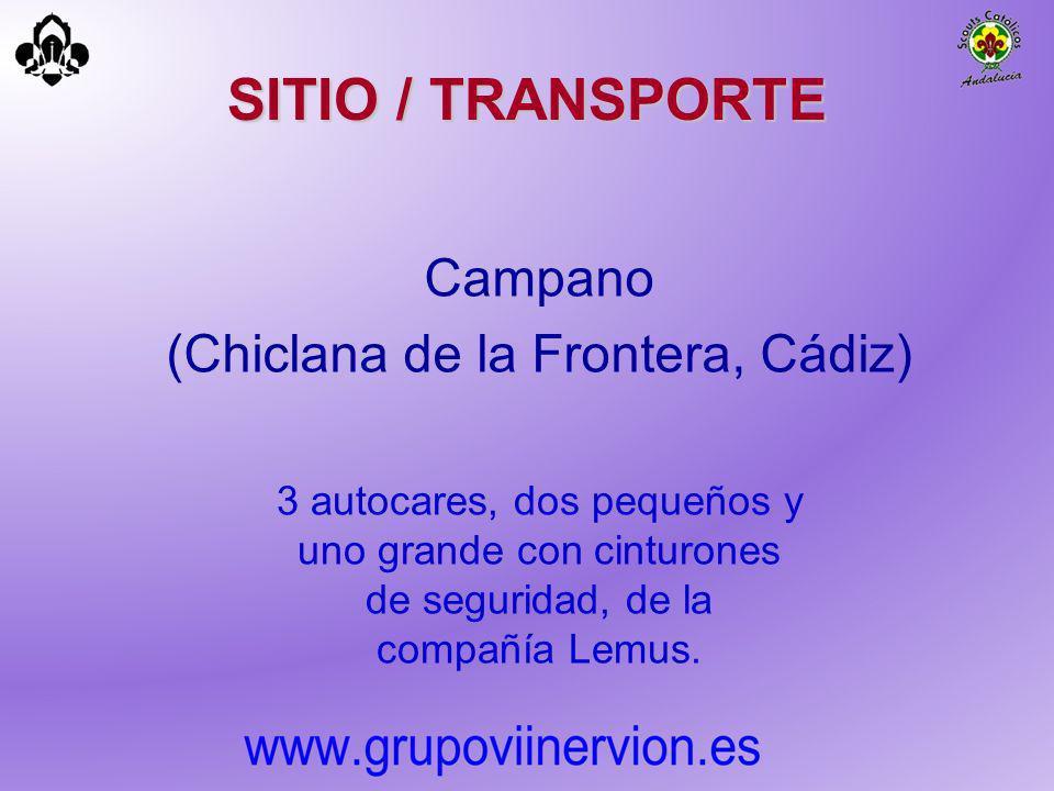 SITIO / TRANSPORTE Campano (Chiclana de la Frontera, Cádiz) 3 autocares, dos pequeños y uno grande con cinturones de seguridad, de la compañía Lemus.